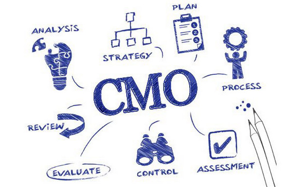 Chief marketing officer là gì? Vai trò của chief marketing officer
